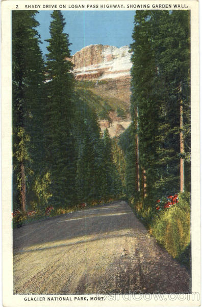 Shady Drive on Logan Pass Highway, Showing Garden Wall Glacier National Park Montana