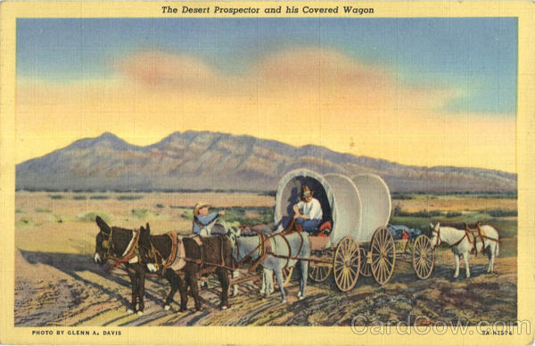 The Desert Prospector and his Covered Wagon Horses