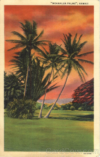 Moanalua Palms Scenic Hawaii