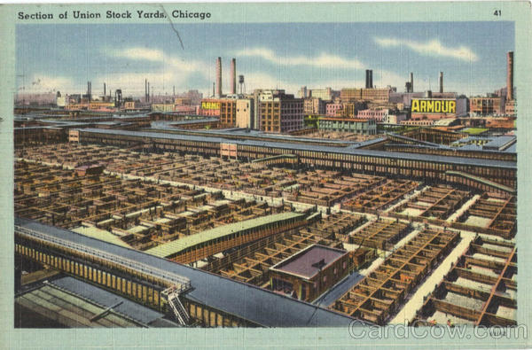 Section of Union Stock Yards Chicago Illinois