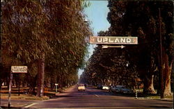 Upland, Euclid Ave Postcard