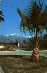 Snow-Capped Mt. San Gorgonio
