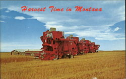 Harvest Time In Montana