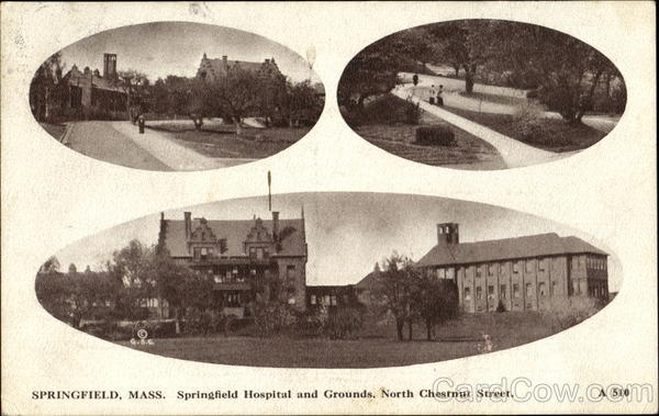 Springfield Hospital And Grounds, North Chestnut Street Massachusetts