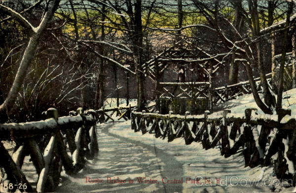 Rustic Bridge In Winter, Central Park New York City