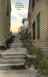 The Old Alley Steps