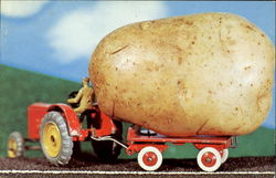 Giant Potato Postcard