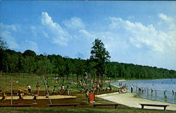 Swimming Area, Prince Gallitzin State Park Postcard
