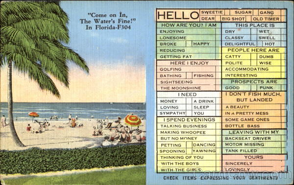 Come On In The Water's Fine Florida Correspondence Cards