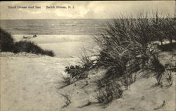 Sand Dunes And Sea