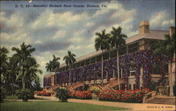 Beautiful Hialeah Race Course