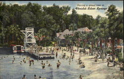 Haring A Grand Time At Florida's Silver Springs