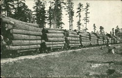 Log Train In The North-West