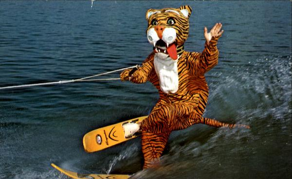 Timmy The Tiger Cypress Gardens Florida Surfing and Waterskiing