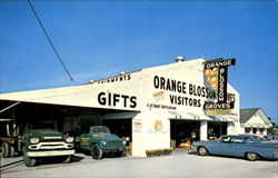 Orange Blossom Groves, 5800 Seminole Blvd. U.S. 19A