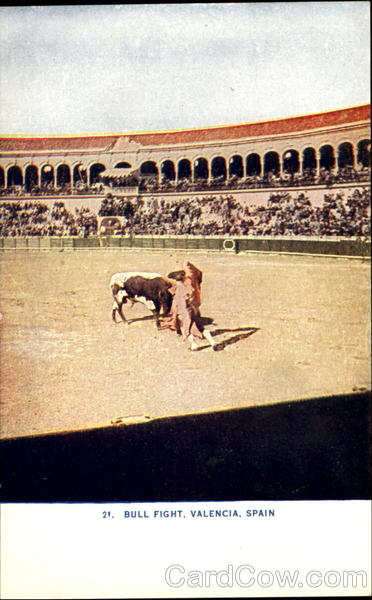 Bull Fight Valencia Spain Spain, Portugal