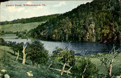 Cutter Pond Postcard