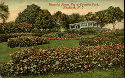Beautiful Flower Bed, Downing Park