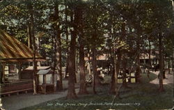 The Grove, Long Branch Park