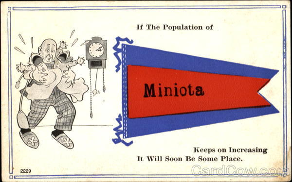 If The Population Of Miniota Canada Manitoba Banners & Pennants