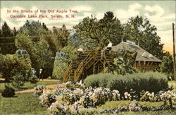 In The Shade Of The Old Apple Tree, Canobie Lake Park Postcard