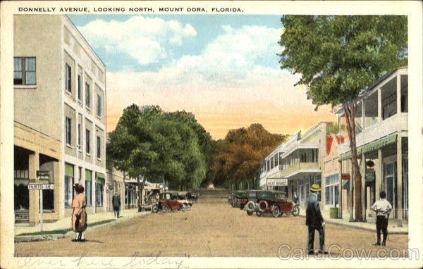 Donnelly Avenue Looking North Mount Dora Florida