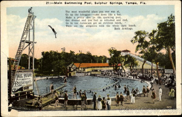 Main Swimming Pool, Sulphur Springs Tampa Florida