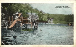The Bathing Dock, Pine Grove