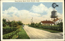 Road Scene, Black Point