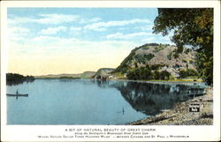 A Bit Of Natural Beauty Of Great Charm Postcard