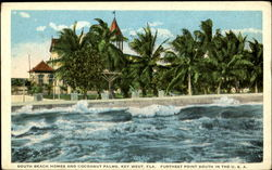 South Beach Homes And Cocoanut Palms