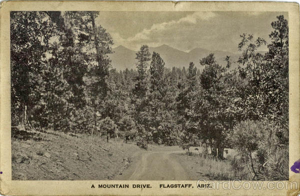 A Mountain Drive Flagstaff Arizona