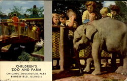 Chicago's New Zoo At Brookfield Postcard