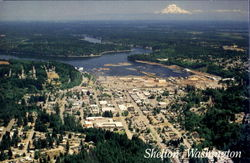 The Hub Of Shelton
