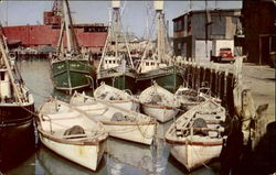 Part Of Gloucester's Famous Fishing Fleet