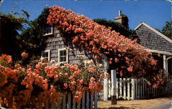Typical Rose Covered Cottage Along The Quaint Streets