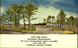 Cape Pine Motel, On Lower County Road