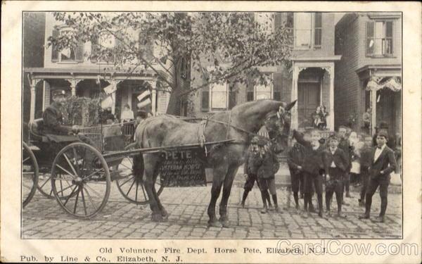 Old Volunteer Fire Dept Horse Pete Elizabeth Nj