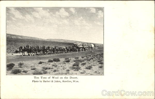 Ten Tons Of Wool On The Desert Cowboy Western