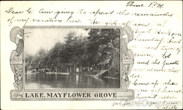 Lake Mayflower Grove Vintage Postcard