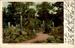 The Arizona Cactus Garden, Hotel Del Monte Monterey Co.
