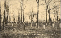 Confederate Burial Grounds, Johnson's Island Postcard
