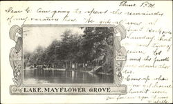 Lake Mayflower Grove