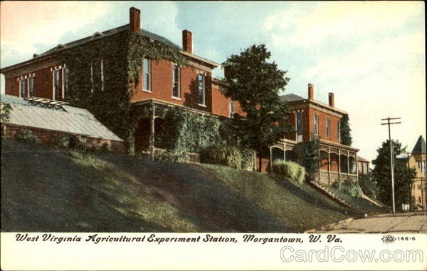 West Virginia Agricultural Experiment Station Morgantown
