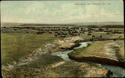 Cattle Range Near Dickinson