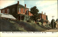West Virginia Agricultural Experiment Station
