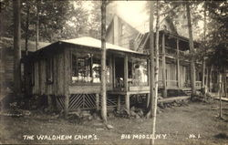 The Waldheim Camp's