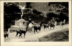 A Wayside Shrine Postcard