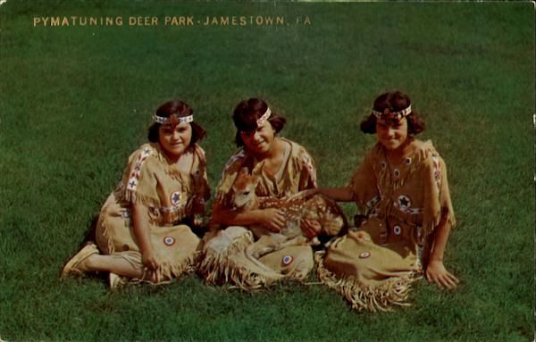 Three Sisters And Their Little Fawn Jamestown Pennsylvania