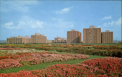 Flower Gardens And East Halls, The Pennsylvania State University Postcard